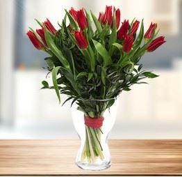 15 Czerwonych Tulipanów
