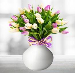 25 Żółtych i Różowych Tulipanów