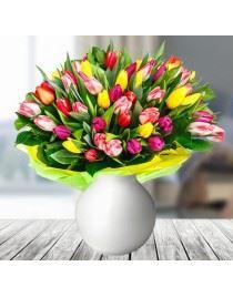50 Kolorowych Tulipanów