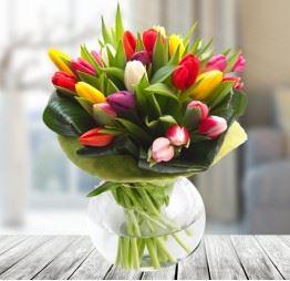 25 kolorowych tulipanów