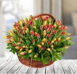 Kosz 100 Kolorowych Tulipanów